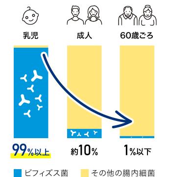 乳児: 99%以上、成人: 約10%、60歳ごろ: 1%以下